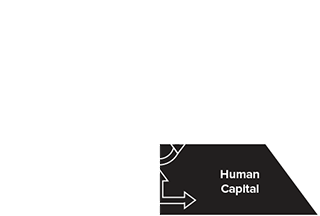Human Capital & Privacy IT System